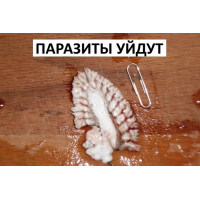 Жуткая статистика о паразитах